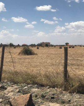 Land For Sale In Syokimau Katani