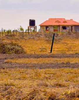 What to consider when buying land in Kenya